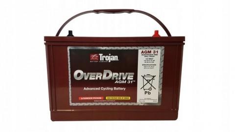 Аккумуляторная батарея TROJAN OverDrive AGM 31